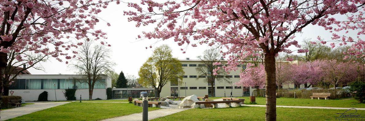 Das Schulhaus Stadt an der Konrad-Adenauer-Straße
